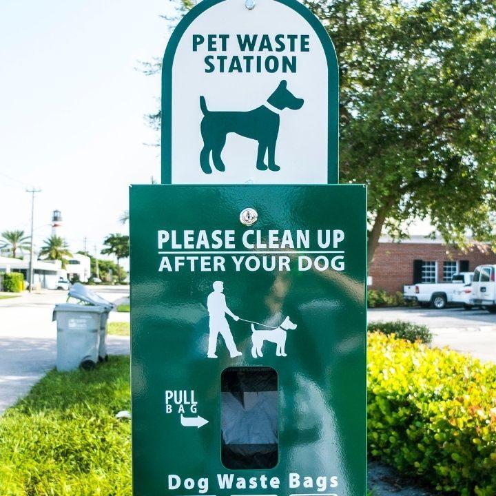 commercial dog poop cleanup